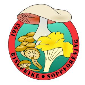 Logo for Ringerike soppforening illustrasjon: Gunborg Pazzi